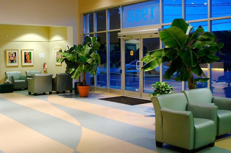 Photo of an empty hospital waiting room