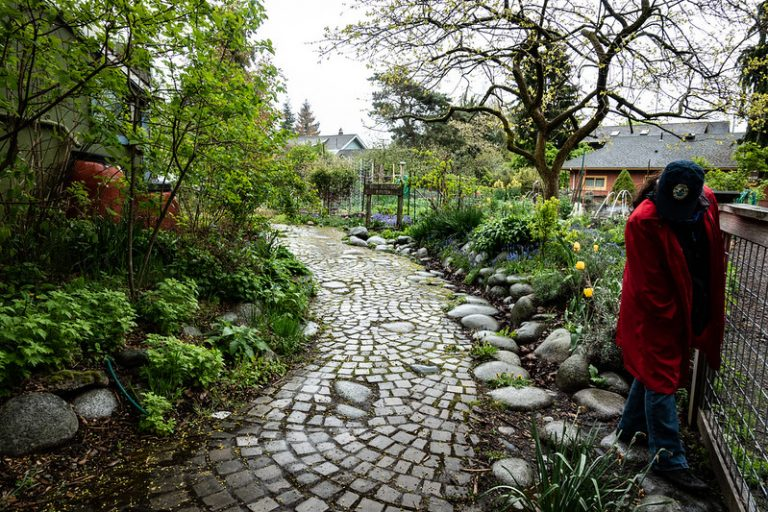 tilth garden in Seattle