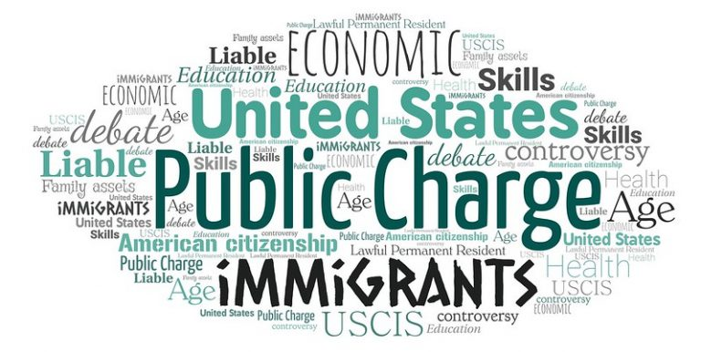 Public Charge Word Cloud